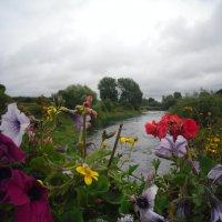 Река Бойн. :: zoja
