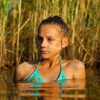 На озере :: Алексей Ревук