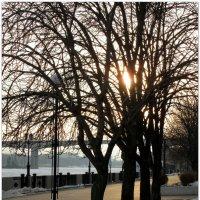 Февраль,вечер на набережной... :: Тамара (st.tamara)