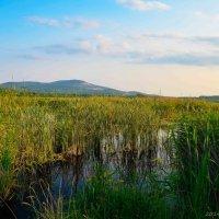 Озеро Булдым :: Вадим Кудинов
