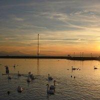 Женевское озеро на закате 1 :: Valeriy(Валерий) Сергиенко