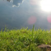 Небо   в    реке :: Мила