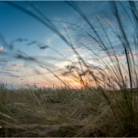 sunset65 :: yameug _
