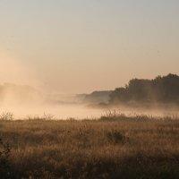 Туман :: Елена Миронова