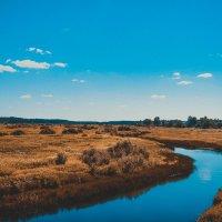 Река Песь. :: Анастасия Александрова