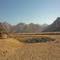 Пустыня :: Bumbic 88