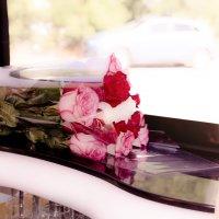 Розы :: Кристина Бессонова