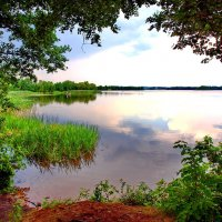 "Озеро "" Суя"" в Полоцком районе- Беларусь :: yuri Zaitsev"