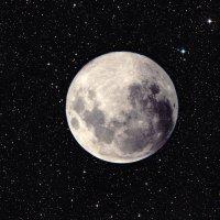 Moon :: Стас Неклюдов