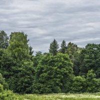 Тихая полянка дальние холмы :: sorovey Sol