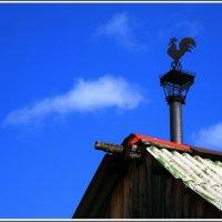 На крыше дома... :: muh5257