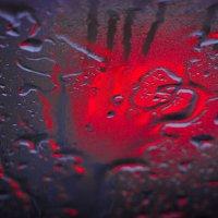 после дождя :: Диана Абдуллина