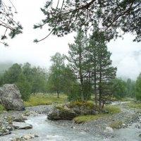 В горах :: Дмитрий