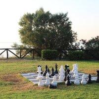 шахматы :: Роман Чмстиков