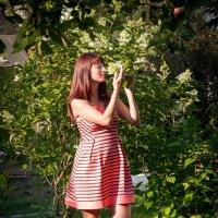 сладкие летние вечера :: Эльмира Суворова