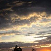 Тучки небесные,вечные странники... :: Самохвалова Зинаида