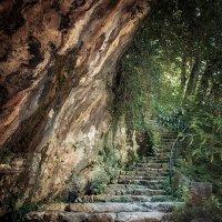 лестница :: сергей агаев