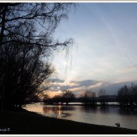 Закат на Рейне :: D D