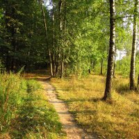 Один день августа - IMG_3878 :: Андрей Лукьянов