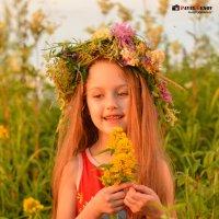 Маленькая красoтка :: Павел Генов
