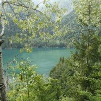 Озеро Рица :: esadesign Егерев