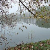Утренний туман осенью :: Лидия (naum.lidiya)
