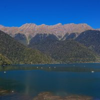 Озеро Рица :: vladimir Bormotov