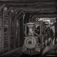 Прибытие поезда :: susanna vasershtein