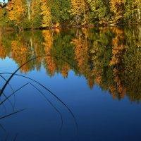 Осень. Озеро :: Cветёлка ***