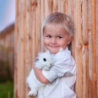 Лето :: Ольга Лихонина