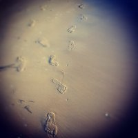 Песочный след :: Ulzhan Ibraeva