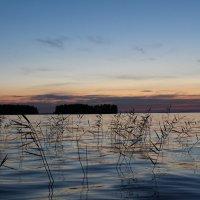 на озере :: Валентина Кузнецова