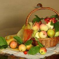 Скоро яблочный спас :: Татьяна Беляева