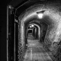 туннель :: Vasiliy V. Rechevskiy