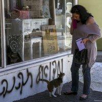 Молчаливый диалог-из серии кошки очарование моё! :: Shmual Hava Retro