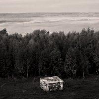Поплыли туманы :: Валерий Талашов