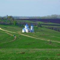Видна отовсюду в деревне церковка. :: Николай Алехин