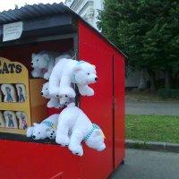Белые МИШКИ на ВДНХ :: Mishka-D2008 ( Мишкина )
