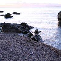 утром на берегу :: valeriy g_g