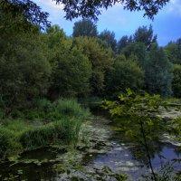 Пейзаж :: Вячеслав