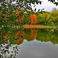 Осенний штрих :: Анатолий Цыганок