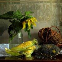 Урожайный :: Маргарита Епишина