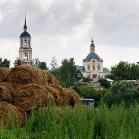 Сельский пейзаж :: Алексей Golovchenko