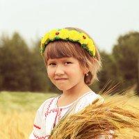 Прогулки по золотистым полям :: Надежда Батискина