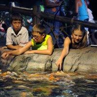 В океанариуме живут очень доверчивые рыбки :: Марина Кузнецова