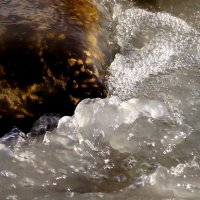Белая вода :: Кристина Воробьева