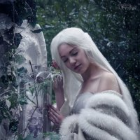 Снежная королева :: Анастасия Светлова