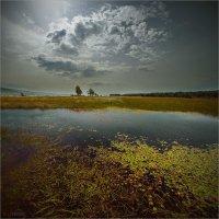На берегу Байкала :: Виктор Перякин