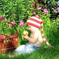 Яблочное настроение :: Ирина Фирсова