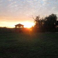 Сельский пейзаж с закатом... :: Тамара (st.tamara)
